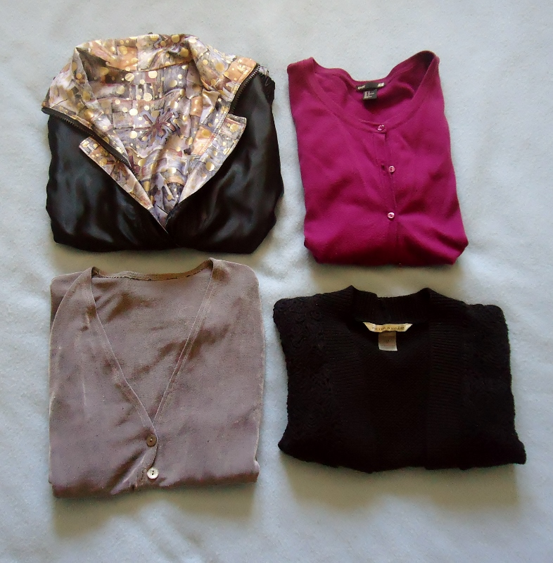 Travel Capsule--jackets