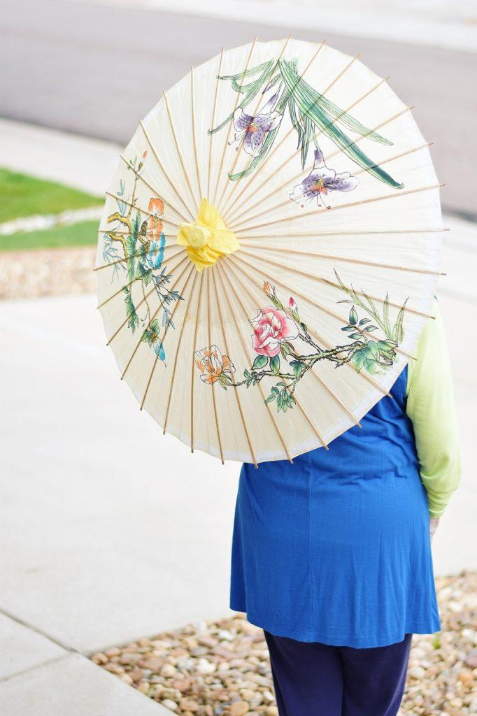 An Umbrella for keeping off the Sun