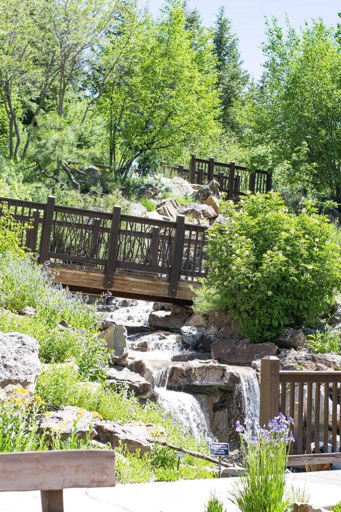 Vail Alpine Garden tour with ladies polo shirts