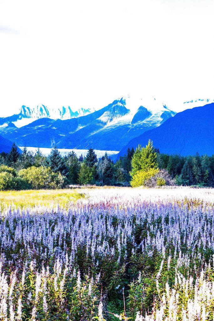 Alaska shore excursions in Juneau at the glacier in fall