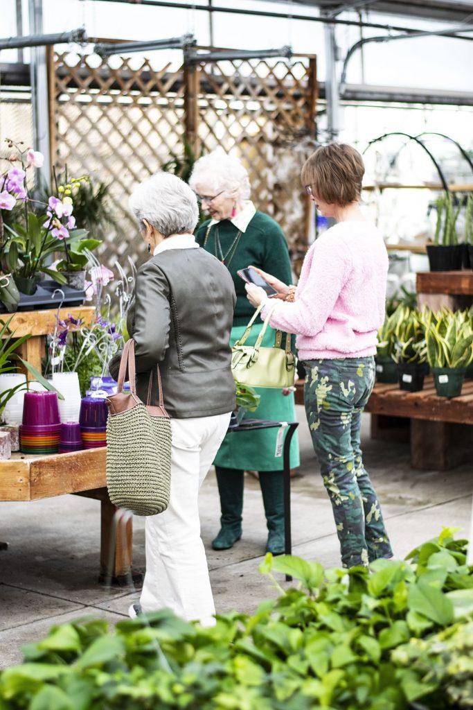 3 women wearing green in a greenhouse