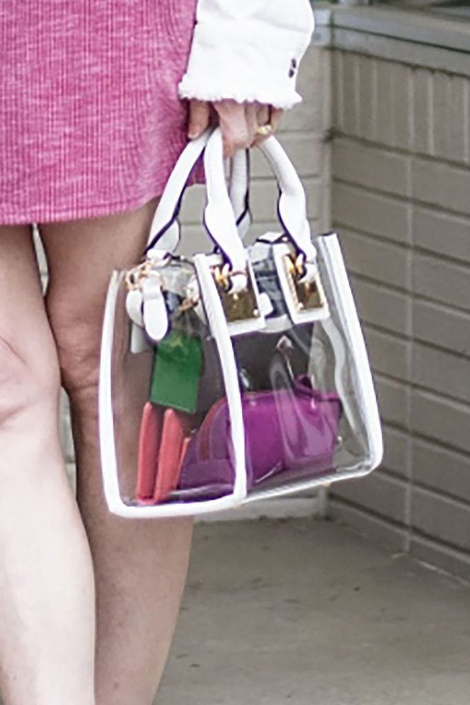Purse organizer with small bags