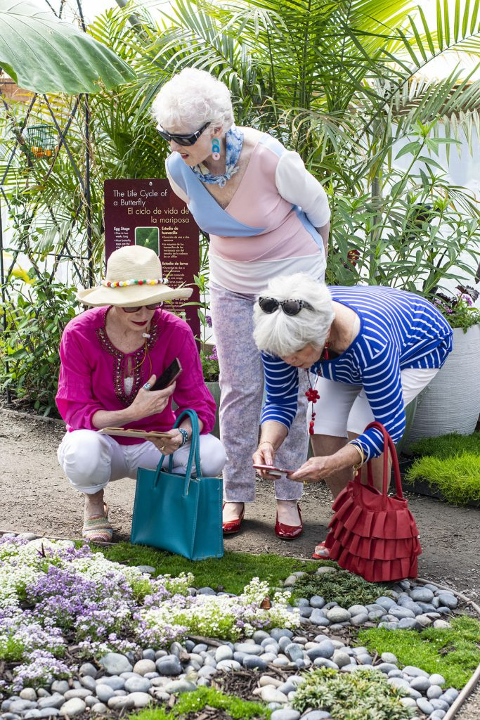 Butterfly gardens in our online color analysis outfits