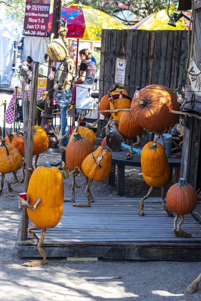 Pumpkins at play