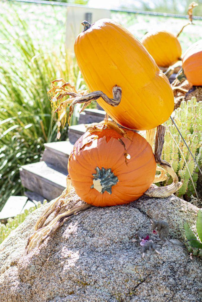 Pumpkins at work