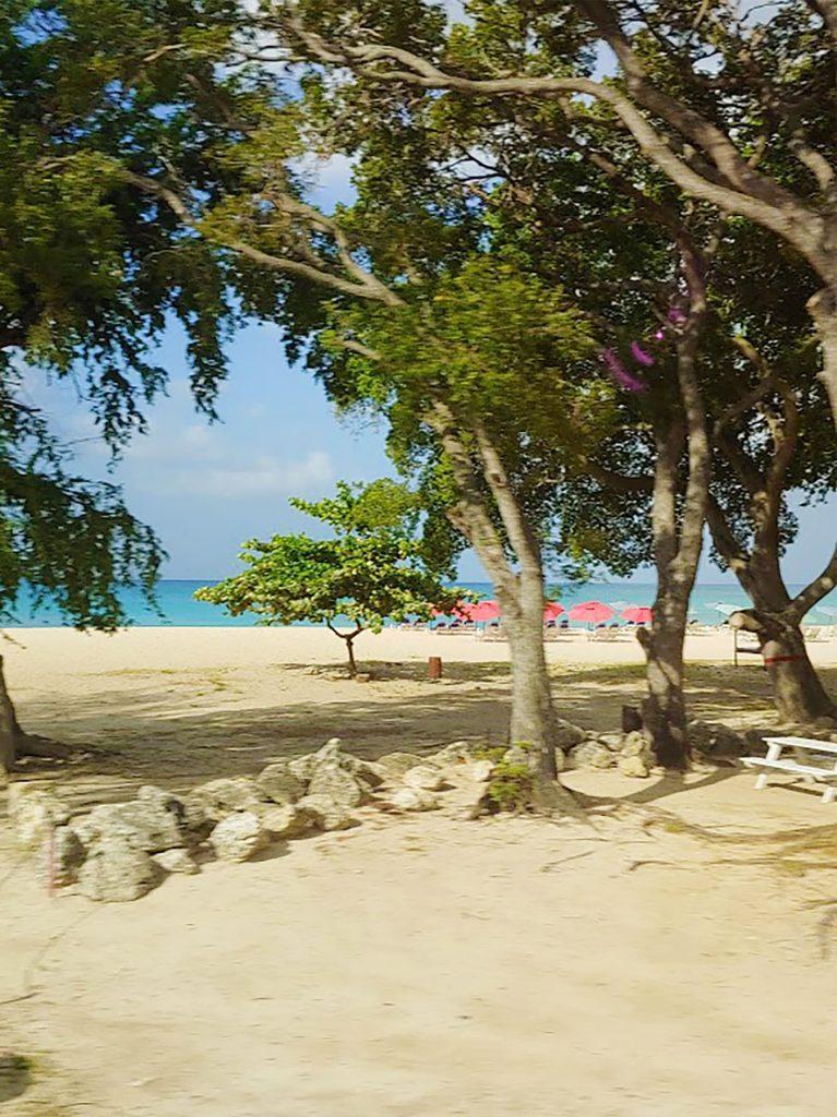 Beaches of Barbados