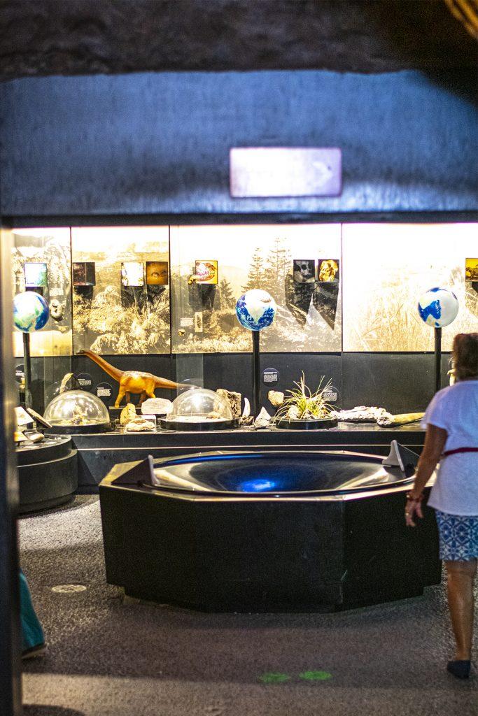 Sonora desert museum in Tucson