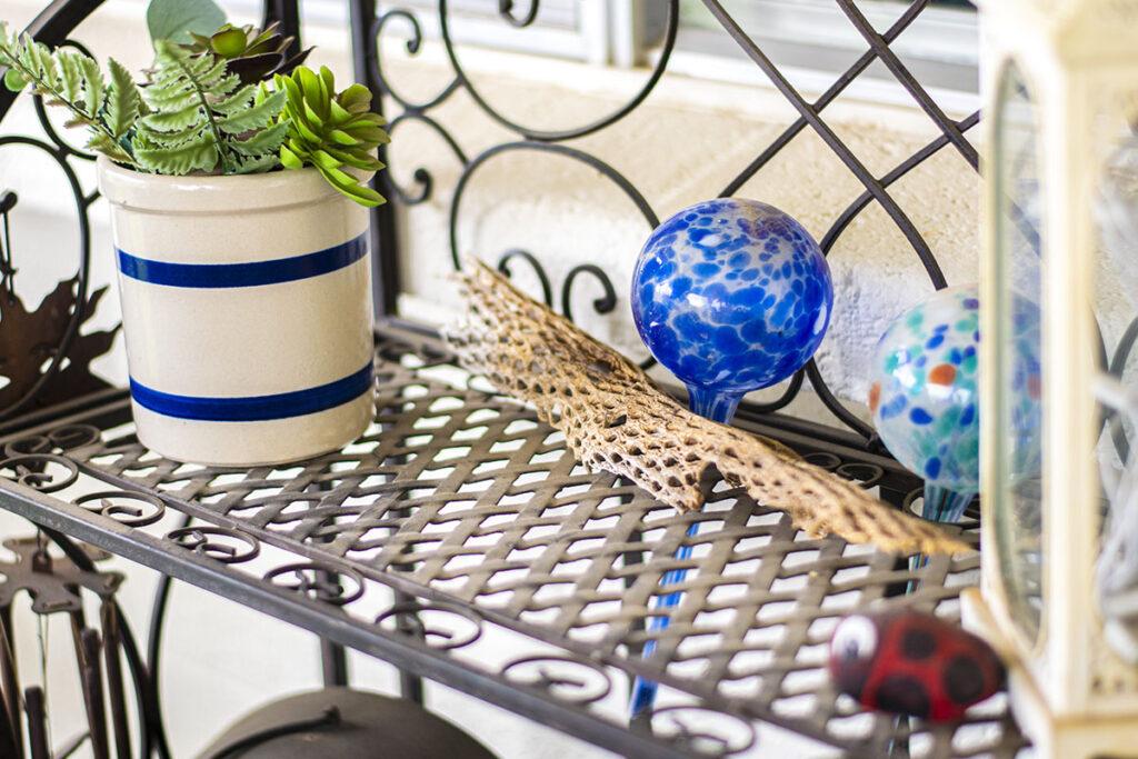 Back porch decor with petrified cactus
