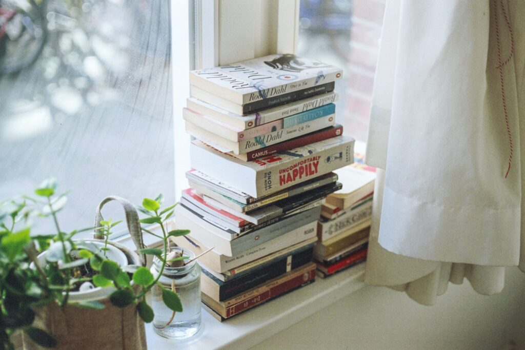 Home filled with books